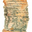 Moldy Bread Loaf — Stock Photo