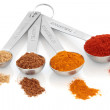 Spice Measurement — Stock Photo #4428299