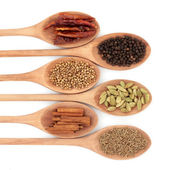 Six Spice Selection — Stock Photo
