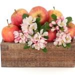 Постер, плакат: Apple Flower Blossom Beauty