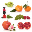 Healthy Fruit Selection - Stock Photo