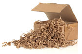 Cardboard Box and Filler — Stock Photo