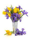 Tulip and Iris Flowers — Stock Photo