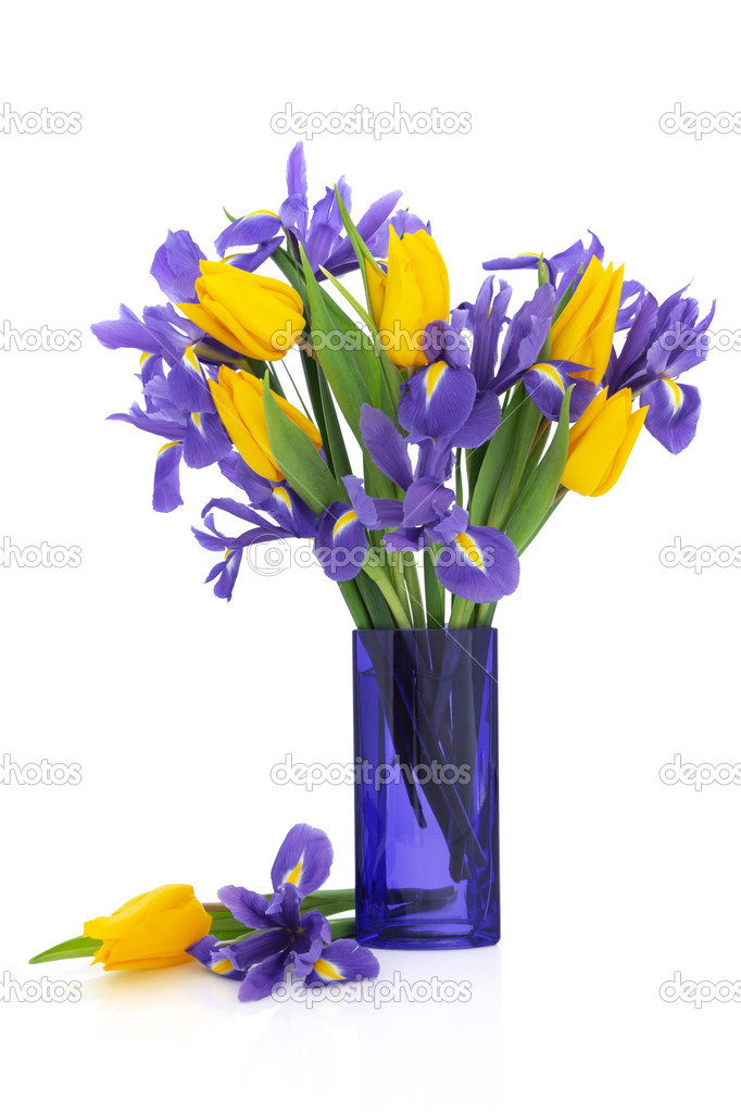 Iris and yellow tulip flower arrangement in a blue glass vase and loose isolated over white background. — Stock Photo #5167788