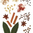 Spice and Herb Mixture — Stock Photo