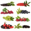 Berry Fruit Sampler — Stock Photo #5200416