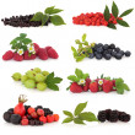Berry Fruit Sampler — Stock Photo #5200416