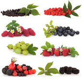 Berry Fruit Sampler — Stock Photo