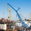 Big cranes in shipyard — Stock Photo