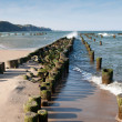 Baltic Seaside — Stock Photo #4130451