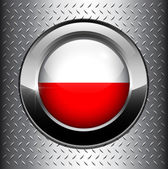 Poland flag button — Stock Vector
