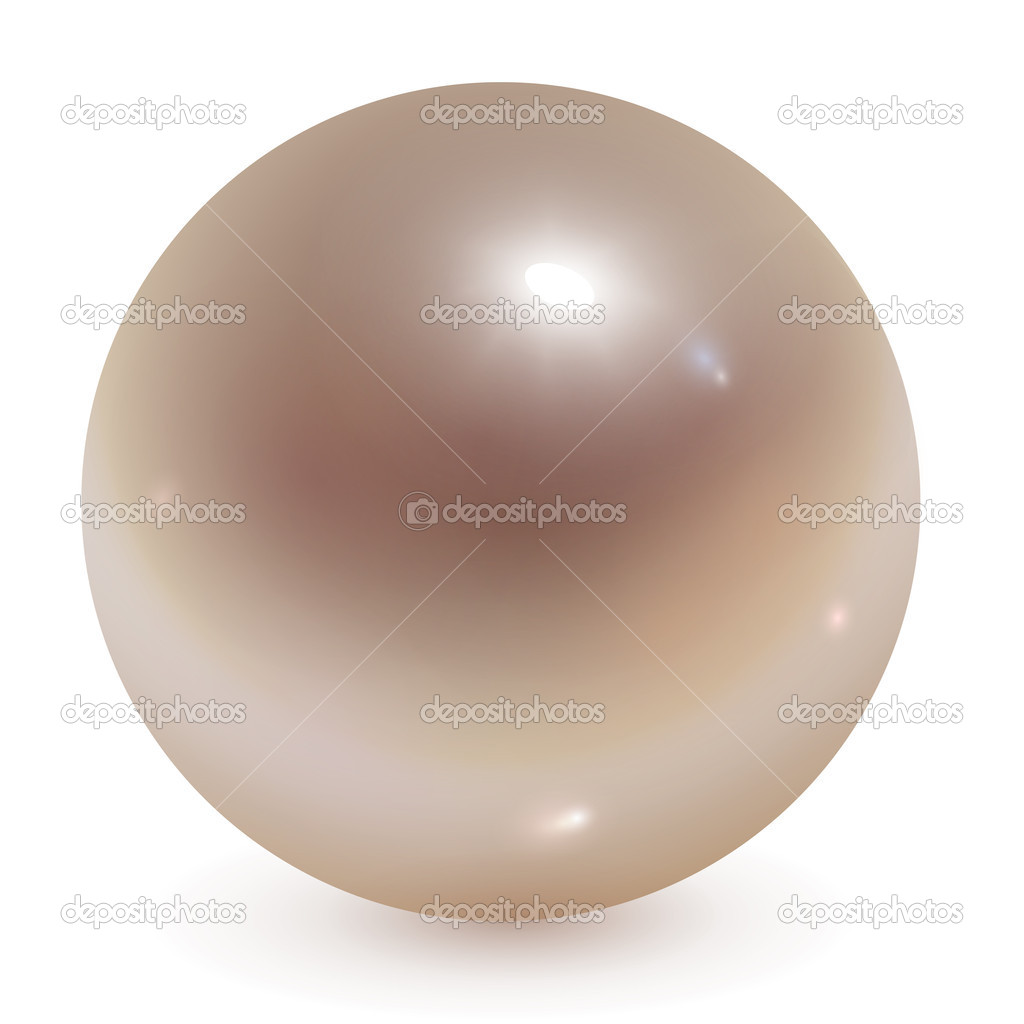 Beautiful pearl realistic vector illustration.  Stock Vector #4467272