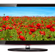 Stock Photo: lcd tv