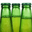 Green beer bottle - Stock Photo