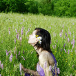 Woman in the meadow — Stock Photo #5303455