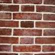 Brick wall — Stock Photo #5336756