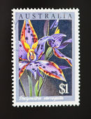 Australian postage stamp of lillies with clipping path — Stock Photo