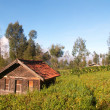 Countryside on Java — Stock Photo