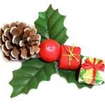 Christmas tree — Stock Photo #3970017