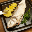 Royalty-Free Stock Photo: Sea bass
