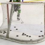 Hockey net — Stock Photo #4479951