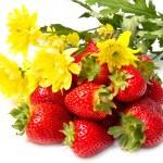 Red strawberry — Stock Photo
