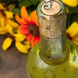 Bottle of wine — Foto Stock