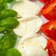 Mozzarellwith tomtoes and basil — Stock Photo #5213178