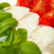 Mozzarella with tomtoes and basil - Stock Photo