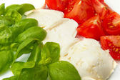 Mozzarella with tomtoes and basil — Stock Photo