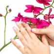 Orchid with woman hand — Stock Photo