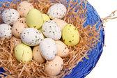 Easter eggs — Stock fotografie