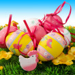 easter eggs — Stock Photo #5310162