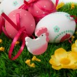 easter eggs — Stock Photo #5310173