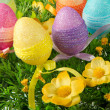 easter eggs — Stock Photo #5310177