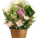 Flowerpot — Stock Photo #4993614
