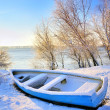 Blue boat near danube river — Stock Photo