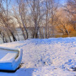 Stock Photo: Blue boat near danube river