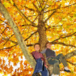 Kids climbed on tree - Stock Photo