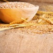 Wheat seeds on rough material - Stock Photo