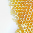 Honeycomb isolated on white - Stock Photo