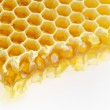 Stock Photo: Honeycomb isolated on white