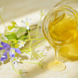 Honey flow and flowers — Stock Photo