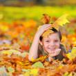 Boy in autumn forest playing with leaves - Stock Photo