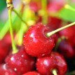 Stock Photo: Ripen cherries