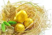 Easter eggs in the nest — Stock Photo