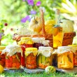 Autumn preserves — Stock Photo #4908916