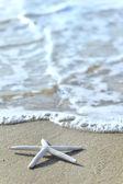 Star on sand — Stock Photo
