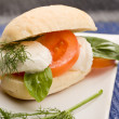 Tomatoe Mozzarella Sandwich — Stock Photo