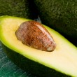 Avocado — Stock fotografie
